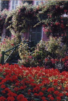 Giverny Claude Monets garden flower list